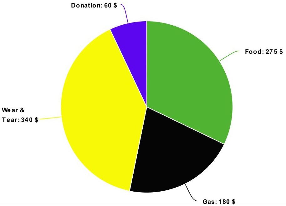DoK Travel Pie Chart